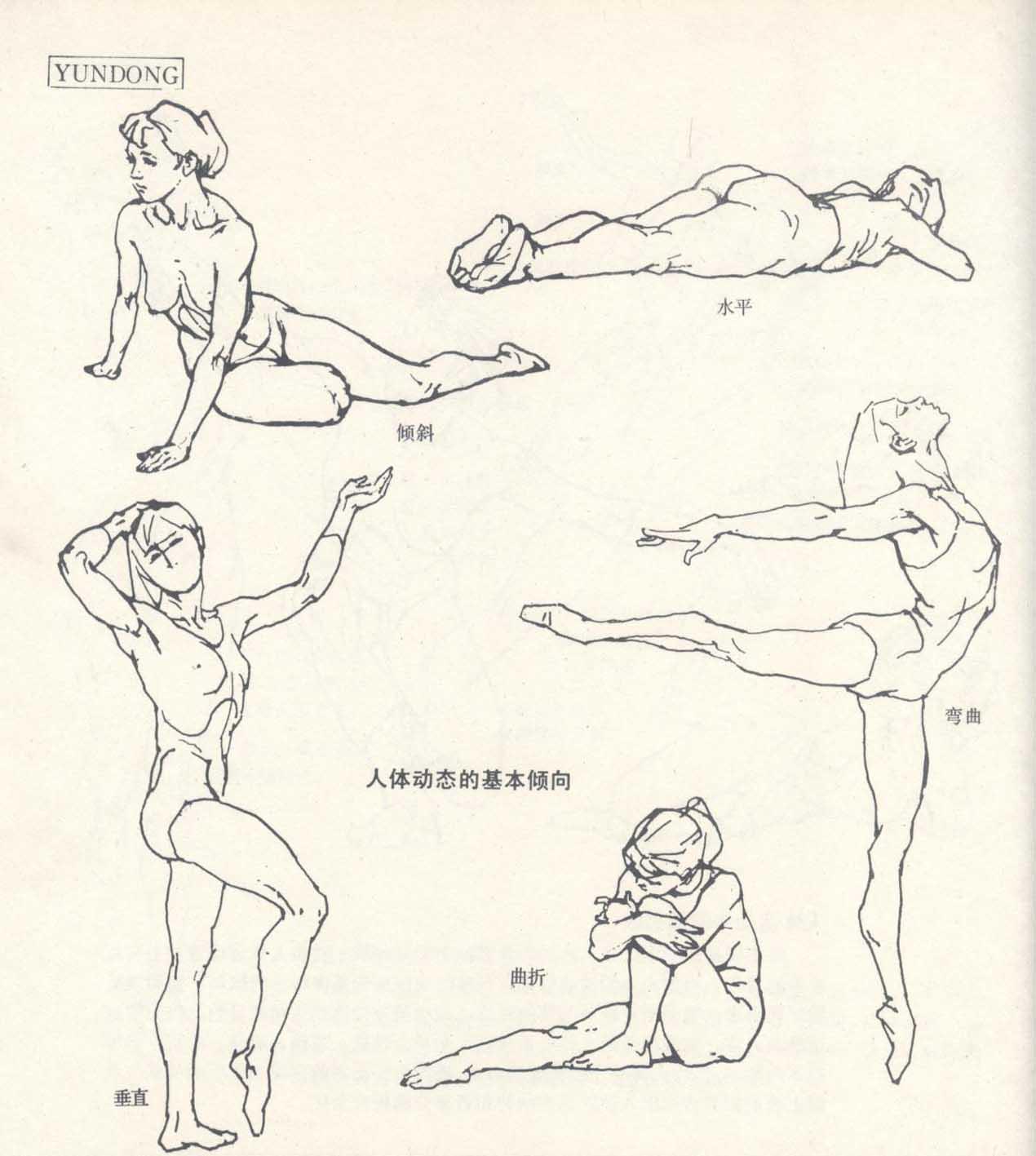 跳跃的青蛙简笔画4
