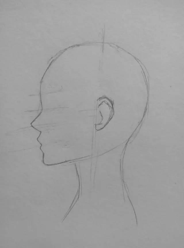 动漫人物绘画教程|侧脸