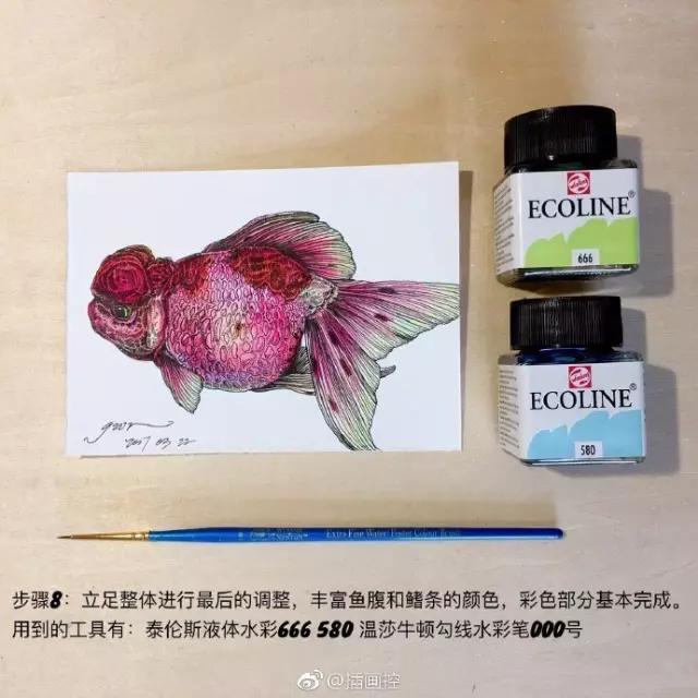淡彩金鱼插画教程